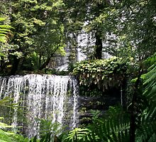 Russell Falls - Mt Field National Park, Tasmania by Ruth Durose