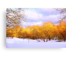 Autumn in Winter Canvas Print