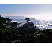 Lone Cypress--Monterey California Photographic Print