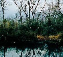 Redding Mirror by BMGImage