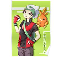 Pokemon Emerald Poster