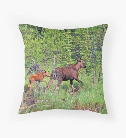 Quetico Moose Throw Pillow