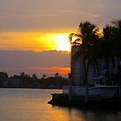 sunset w palm beach by angelc1