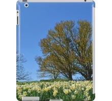 A Field of Daffodils iPad Case/Skin
