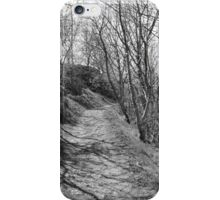 Path through the Sticks. iPhone Case/Skin
