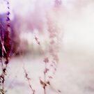 #010 by Paul Desmond