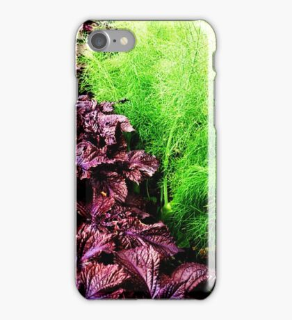 Vegetables growing at the allotment iPhone Case/Skin