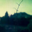 #011 by Paul Desmond
