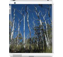 Death On The Carro Track iPad Case/Skin