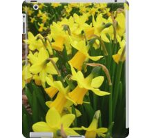 """A Host Of Golden Daffodils"" iPad Case/Skin"