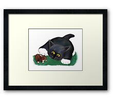 Tuxedo Kitten Pets his Friend, Bunny Framed Print