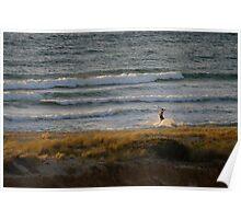 Skimming the shore breakers Poster