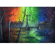 Back In The Bayou By Sherry Arthur Photographic Print