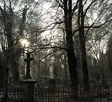 Old Cemetery part2 by mackozer