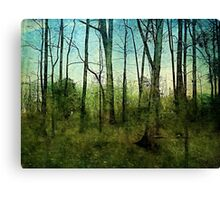 Forest rain Canvas Print