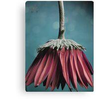 Ragged Blossom's new skirt Canvas Print