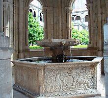 Alcobaca, Sta Maria, Claustro do Silencio, Fountain by presbi