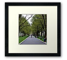Spring Gloom Framed Print