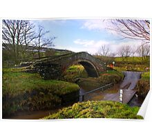 Duck Bridge Poster