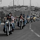 Toy Run Convoy by Trayci Deptuck