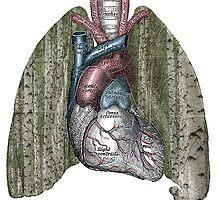 Deep Breath by Skeletonic