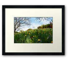 Spring, my favorite time of year Framed Print