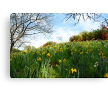 Spring, my favorite time of year Canvas Print