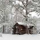 Winter Barn by Jerry  Mumma