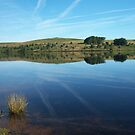 Dartmoor: Fernworthy Reflections by Rob Parsons