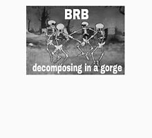 BRB COMPOSING IN A GORGE Unisex T-Shirt