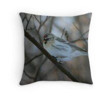 female Common Redpoll Throw Pillow