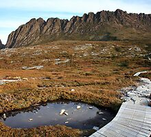 The Overland Trail below Cradle Mountain, Australia by Michael Boniwell