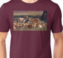 Blackbuck Female And Fawns Unisex T-Shirt