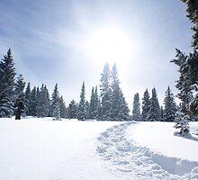 Winter sun by Jonathr67