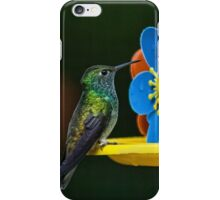 Hummingbird of Iguazu iPhone Case/Skin