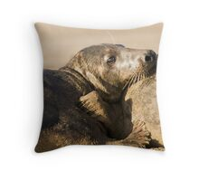 Rest & Relaxation Throw Pillow
