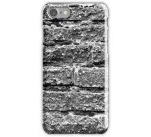 College Brick and Mortar iPhone Case/Skin
