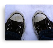 2feet of snow Canvas Print