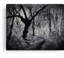 Monochrome Path 2 Canvas Print