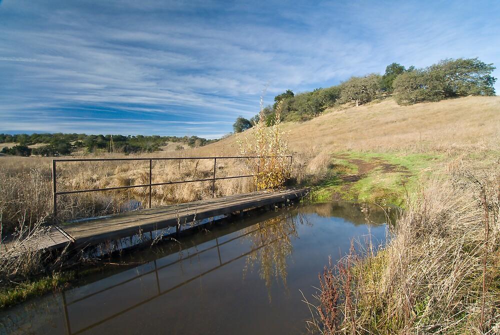 Santa Rosa Plateau Reserve hiking trail by David Jones