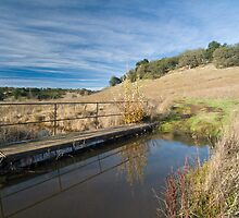 Santa Rosa Plateau Reserve hiking trail by David Jones