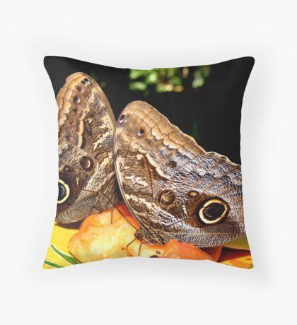Owl Butterflies Throw Pillow