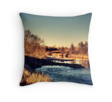 Everything Flows  Throw Pillow