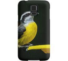 Birds of Iguazu Samsung Galaxy Case/Skin