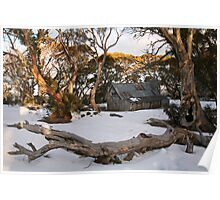 Wallace Hut, Falls Creek, Australia Poster