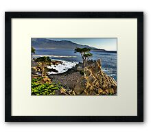 Lone Cypress at Pebble Beach Framed Print