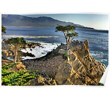 Lone Cypress at Pebble Beach Poster