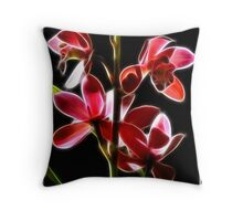 Backlit Beauties Throw Pillow