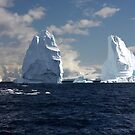 A ship amongst the bergs. by Michelle Dry