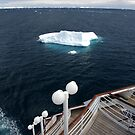 Bergs off the back by Michelle Dry